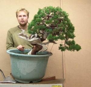 Juniperus Formosana#4